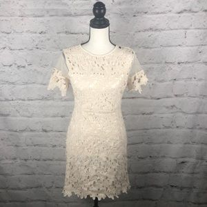NWOT Romeo & Juliet Couture Lace Dress Sz Medium